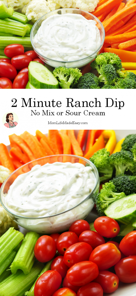 Ranch Dip is a classic, whether you like it on veggies or potato chips! Here's how to make it from scratch (without a mix or sour cream) in less than 2 minutes!