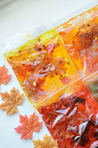 fall themed sensory bag for toddlers