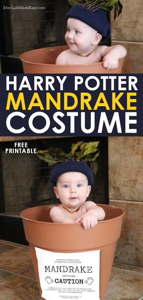 Easy halloween costume for kids Harry potter mandrake costume