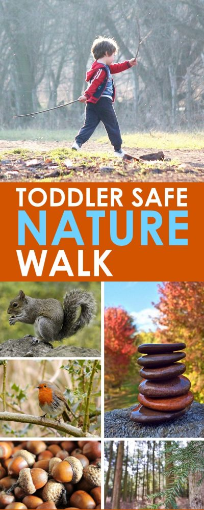 Toddler Outdoor Activities: These tips for a toddler safe nature walk will allow your child to explore the wonders of nature, without getting into trouble! Everything in the list is safe if they happen to pop it in their mouths, and it's a great outdoor activity to help your family enjoy some fresh air together!