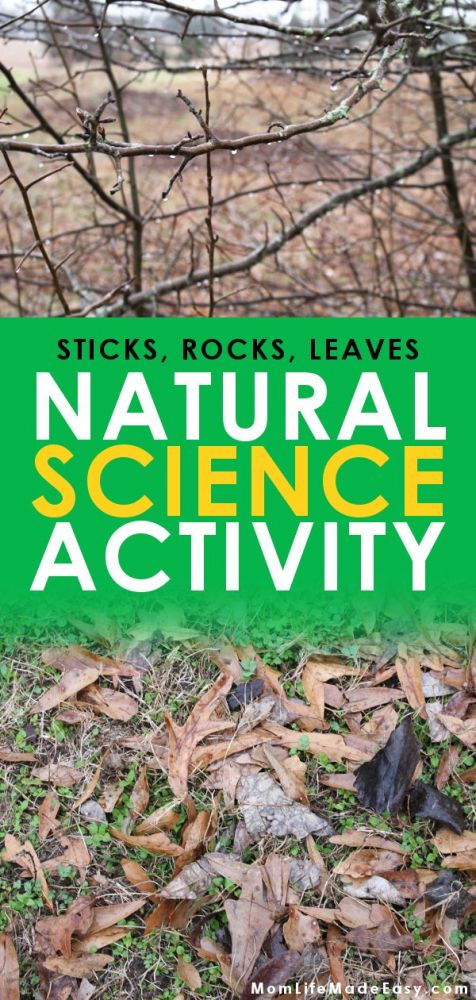 natural science for kids