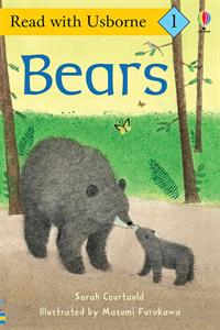 kindergarten book about bears