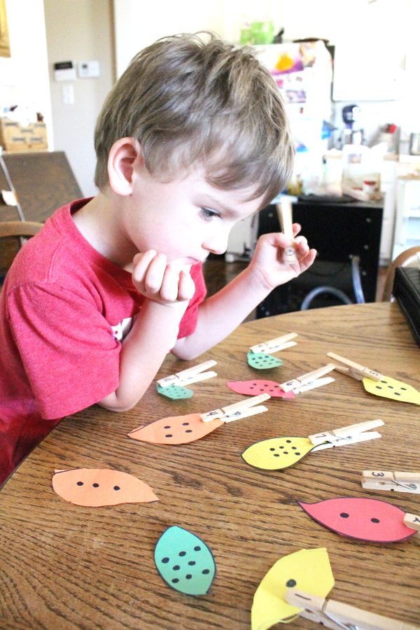 4 year old boy playing fall leaves math activity