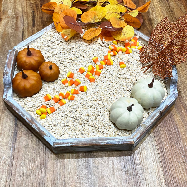 pumpkins oats and candy corn arranged to make a lovely fall sensory bin