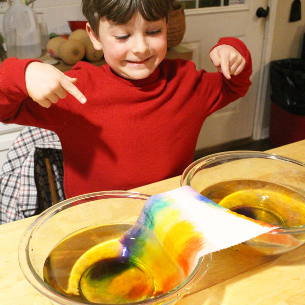 elementary student observing capillary action project