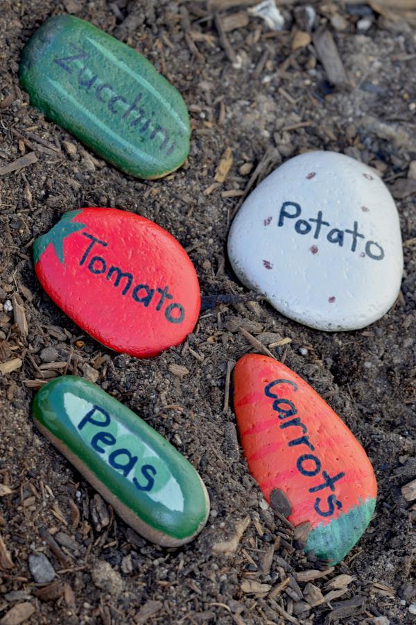 rocks painted like vegetables for the garden